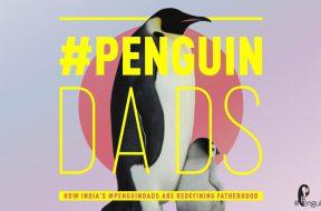 Penguin Dads PenguinDads Flipkart